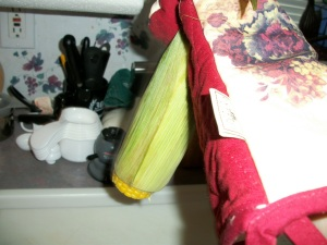Shake corn cob until it evacuates its husks.